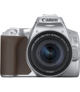 Canon EOS 250D + 18-55mm IS STM Kit, silver