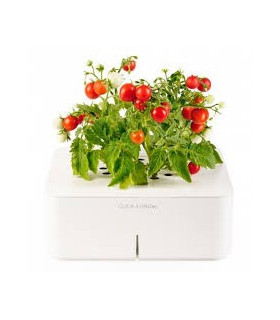 CLICK&GROW Mini Tomato Starter Kit
